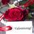 palavra · dia · dos · namorados · flores · primavera · rosa - foto stock © Nelosa