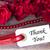 rose background stock photo © nelosa