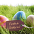 tekst · vrolijk · pasen · grappig · teddy · chick · eierschaal - stockfoto © nelosa