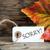 étiquette · automne · favori · saison · automne - photo stock © nelosa