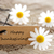 doğal · bakıyor · etiket · teşekkür · ederim · afiş · beyaz - stok fotoğraf © nelosa