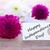boldog · nap · fehér · szalag · sárga · virágok · virágok - stock fotó © nelosa