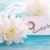 ajándék · ajándékutalvány · magas · grafikus · virágmintás · díszek - stock fotó © nelosa