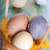 brązowy · żółty · jaj · Wielkanoc · wiosną - zdjęcia stock © nelosa