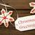Navidad · cookies · texto · estaciones · tiro - foto stock © nelosa