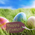three colorful easter eggs on sunny green grass with label happy easter stock photo © nelosa