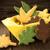 秋 · アレンジメント · 食品 · リンゴ · 葉 · 赤 - ストックフォト © nelosa