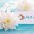 etichetta · blu · benessere · parola · fiori · bianchi · salute - foto d'archivio © Nelosa