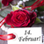 rosas · vermelhas · branco · etiqueta · flores · primavera - foto stock © Nelosa