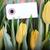 citromsárga · fekete · szalag · kép · renderelt · mű - stock fotó © nelosa