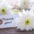 etichetta · grazie · bianco · fiori · fiori · legno - foto d'archivio © Nelosa