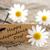 címke · boldog · negyedike · fehér · citromsárga · virágok - stock fotó © nelosa