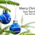 christmas · tle · oddziału · na · zewnątrz · skupić - zdjęcia stock © nelosa