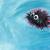rubber sea urchin stock photo © nelsonart