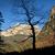 autunno · parco · panorama · alberi · arancione · impianto - foto d'archivio © nenetus