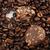 brown coffee stock photo © nenovbrothers