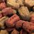 mascota · alimentos · perro · color · cachorro · comida - foto stock © nenovbrothers