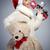speelgoed · beer · verjaardag · hoed · geïsoleerd · witte - stockfoto © neonshot