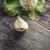 гвоздика · чеснока · свежие · белый · продовольствие · лампа - Сток-фото © nessokv