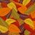 autumn leaves vector illustration stock photo © nezezon