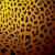 leopard skin gold stock photo © nicemonkey