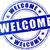 welcome blue stamp stock photo © nickylarson974