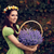 тростник · корзины · лаванды · букет · Purple · цветы - Сток-фото © nicoletaionescu