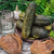 komkommers · houten · glas · land · vallen · plantaardige - stockfoto © nikolaydonetsk