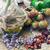 korzeń · uzdrowienie · zioła · wzrosła · biodra · wiejski - zdjęcia stock © nikolaydonetsk
