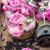 розовый · чай · роз · аннотация · красивой · букет - Сток-фото © nikolaydonetsk