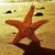seastar in the seashore with a retro effect stock photo © nito