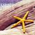 starfish · plage · été · temps · ciel · mer - photo stock © nito