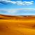 natural reserve of dunes of maspalomas in gran canaria spain stock photo © nito