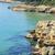 tarragona coast spain stock photo © nito