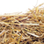 paja · trigo · cosecha · campo · planta - foto stock © nito