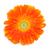 オレンジ · デイジーチェーン · 花 · 孤立した · 白 · 赤 - ストックフォト © nito