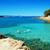 akdeniz · deniz · plaj · ada · İspanya - stok fotoğraf © nito