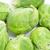 produzir · orgânico · Bruxelas · exibir · agricultores · mercado - foto stock © nito