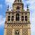 cattedrale · dettaglio · costruzione · città · viaggio · architettura - foto d'archivio © nito