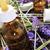 botella · cuentagotas · aromaterapia · esencia · marrón - foto stock © nito