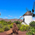 paisagem · canárias · Espanha · céu · árvores · montanhas - foto stock © nito