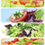 salad collage stock photo © nito