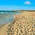 görmek · plaj · İspanya · deniz · feneri · deniz - stok fotoğraf © nito