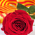 книга · красную · розу · флаг · святой · старые · книги - Сток-фото © nito