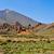 park · tenerife · dağlar · seyahat · Avrupa - stok fotoğraf © nito