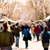 defocused blur background of people walking stock photo © nito