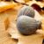 ver · fresco · cor · de · volta · fruto - foto stock © nito