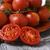 spanyol · felszolgált · tapas · közelkép · tányér · rusztikus - stock fotó © nito