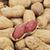 amendoins · branco · azul · nozes - foto stock © nito