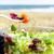 молодым · человеком · еды · Салат · продовольствие · человека · счастливым - Сток-фото © nito